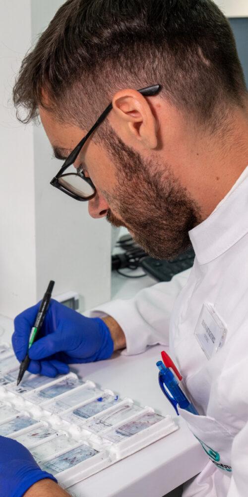 Κυτταρολογικές εξετάσεις - Μικροσκόπηση 3
